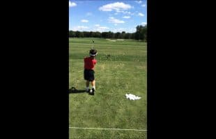 Fun Chipping Game